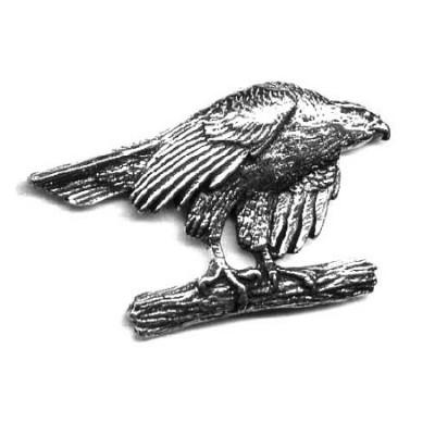 Odznak - jestřáb na kmenu