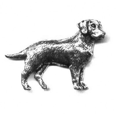 Odznak - labrador