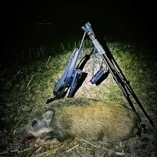 🌲-🐗 Lovu Zdar 🌿 #leslovtrebic #myslivcuvobchod  . . #pulsarnightvision #pulsarvision #blaserr8 #blaser #blaserultimate #hunting #huntinglife #huntingequipment #wildboarhunting #myslivost #lovectvi #lovuzdar